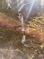Just another compound bow in the forest (ti4s) Tags: bow compound mathews forest archery