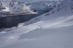 Kleiner Mensch in großer Landschaft (Globo Alpin) Tags: lofoten norwegen skitouren winter 2017 skiflugreisen ausland wsf0019