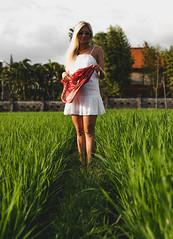Julie (matsandersen) Tags: ricefields rice girlfriend bali canggu canon 5d mkiv sunset golden hour