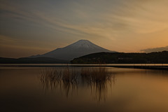 Dancing reeds in sunset light (小川 Ogawasan) Tags: japan japon fujisan sunset le color sea water landscape seascape calm mood feel see hear silhouette nikkor night longexposure zen feeling peaceful