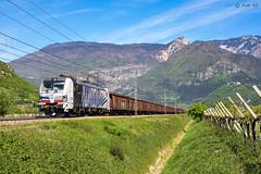 Br 193.771 / Volano (TN) (Aldo '69) Tags: lokomotion vectron zebra br193771 rtc brennerbahn volano treno tamns siemens aldo69volano