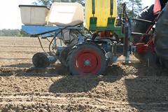 Peanut Planting 11 (UGA College of Ag & Environmental Sciences - OCCS) Tags: uga tifton campus peanuts planting