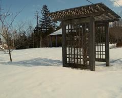 0007797 (Shakies Buddy) Tags: winter snow canada nb bandstand unitypark ©allrightsreserved nbphoto grandbaywestfield