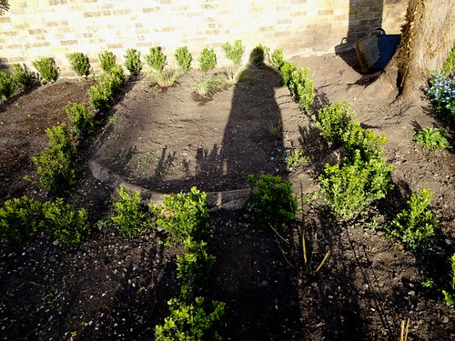 My shadow in the garden