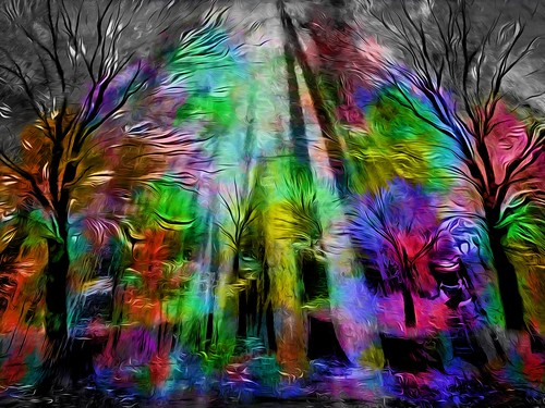 Trees in Color
