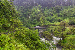 Road To Hana (clarsonx) Tags: bridge trees green water rain river hawaii waterfall highway rainforest stream maui rapids jungle tropical roadtohana