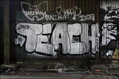 Teach DDS (Alex Ellison) Tags: urban abandoned graffiti chrome graff wutang teach derelict eastlondon dds panik
