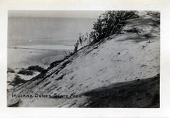 Indiana Dunes State Park, circa 1940 - Chesterton, Indiana (Shook Photos) Tags: statepark beach sand postcard dunes dune indiana lakemichigan postcards beaches recreation blowout chesterton beachfront indianadunes indianadunesstatepark portercounty chestertonindiana postcardfolder postcardfolders