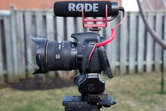 """Left Side - Canon T4i + Rode VideoMic GO • <a style=""""font-size:0.8em;"""" href=""""http://www.flickr.com/photos/65051383@N05/14023443242/"""" target=""""_blank"""">View on Flickr</a>"""