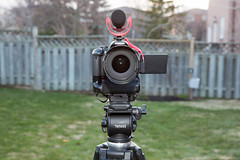 "Canon T4i + Rode VideoMic GO • <a style=""font-size:0.8em;"" href=""http://www.flickr.com/photos/65051383@N05/14023458171/"" target=""_blank"">View on Flickr</a>"