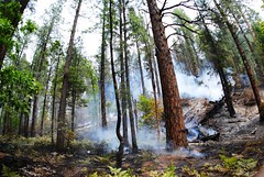 SlideFire (Coconino National Forest) Tags: fire sedona flagstaff wildfire oakcreekcanyon coconinonationalforest forestservice slidefire