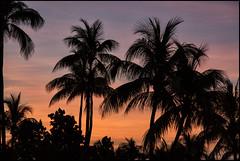 Cuba_2014_04_0156_IMG_3033 (_SG_) Tags: blue sunset holiday seascape reflection water stone wasser sonnenuntergang urlaub cuba insel steine caribbean blau spiegelung ferien kuba karibik republicofcuba republikkuba