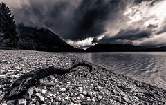 Dark, dull and dismal (One_Penny) Tags: light sky blackandwhite bw lake mountains tree nature water clouds canon germany dark landscape bayern deutschland bavaria photography see mood dismal stones sinister oberbayern atmosphere shore duotone tones dull canonef1740mmf4lusm walchensee 6d brach canon6d
