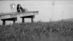 Girl + Dog -- (leicaflex sl) (PositiveAboutNegatives) Tags: leica blackandwhite bw dog slr film girl lady analog vintage lab labrador yellowlab dof bokeh depthoffield sl coolscan leicaflex foma fomapan100 aristaedu leitz leicar leicaflexsl 135mmelmarit nikon9000scanner blackandwhitefilmphotography leicafilmphotography freefilmimages freefilmpictures