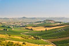 Fucecchio - Toscana (#helloelisagabriel) Tags: hello italy panorama nikon italia tuscany toscana paesaggio elisa 2014 fucecchio d7100 elisagabriel gabbrielleschi helloelisagabriel yuzaphoto