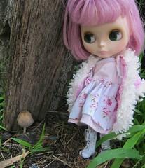 Melissa finds a garden fungi