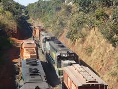 17513 DDM45 #870 + BB40-2 #8153 + 8126 com trem C744 ultrapassando a BB40-2 #8141 do trem X743 em Uberlândia MG      (1) (Johannes J. Smit) Tags: brasil vale trens fca vli