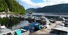 Alaska Salmon Fishing Lodge - Ketchikan 30