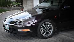 2014 Honda wheels on 96 Integra (Leightino) Tags: honda dark purple wheels violet pearl dvp acura integra fit 96 2014 hondafit