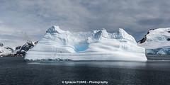 Palid blue landscape (Ignacio Ferre) Tags: landscape antarctica paisaje iceberg antrtida