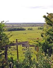 14937 (benbobjr) Tags: uk greatbritain england english way unitedkingdom britain path lincolnshire lincoln gb british viking footpath pathway bridleway midlands publicfootpath waddington edgecliff bracebridgeheath eastmidlands vikingway withamvalley lincolnedge lincolncliff lincolnridge