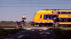 RR Level Crossing Griendsveen NL Grouwveenweg/Turfstrooisel 23.7.2014 (pipoclown269) Tags: crossing rr level bu spoorwegovergang overweg bahnubergang