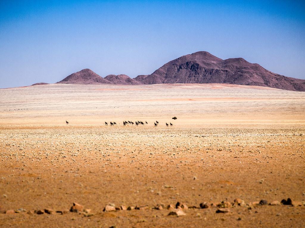 Namibia Landscape, NamibRand Nature Reserve, Namibia