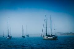 Foggy day at Morro Bay (julesnene) Tags: california blue beach fog boats boat sailing boating morrobay mast morrorock sanluisobispo pacificcoast californiacoast volcanicplug canoneos50d canonefs1755mmf28isusmlens californiahistoricallandmark julesnene juliasumangil