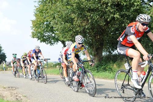 Geel Oosterlo  (115)