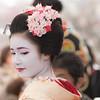 20170225_033 (kikukudo) Tags: 梅花祭野点大茶湯 上七軒 北野天満宮 kyoto maikosan 舞妓