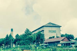 Pedro Factory