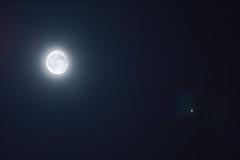 Moon and Jupiter conjunction (AlessioVaccaro) Tags: moon jupiter io callisto ganymede europa conjunction astrofotografia astrophotography astrophoto astronomy astronomia astro sky nightsky nightscape nightscaper night deepsky deepskyobject telelens telescope teleobiettvo teleobiettivo telescopes telescopio telephoto stellato stelle stellarium hdr giove sistemasolare solarsystem longexposure long exposure blue bluejourney palermo panorama astrometrydotnet:id=nova1985596 astrometrydotnet:status=solved
