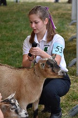 County Fair Contestant (swong95765) Tags: animal contest fair woman female lady judging