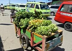 Heavy load, Pasar Kota Ambon, P.Ambon (Sekitar) Tags: maluku moluccas molukken pulau nusa islands indonesia asia ambon leitimur heavy load pasar kota pisang bananas market besar