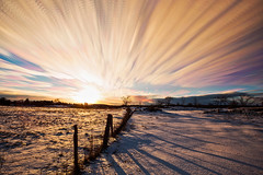 Borderline (Matt Molloy) Tags: mattmolloy timelapse photography timestack photostack movement motion sunset colourful sky sun light clouds lines streaks old fence barbedwire winter snow field trees countryside impressionism seeleysbay ontario canada landscape lovelife