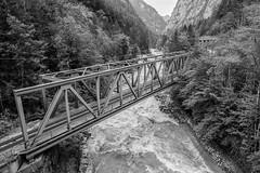 Gesäuse II (Wolfgang Hackl) Tags: railway bridge valley blackandwhite styria austria gesäuse enns ennstal mountains trees olympus omd em10