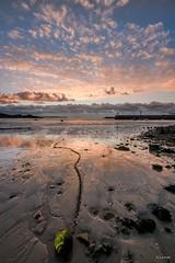 marée basse au port d'Erquy (berjanic) Tags: france bretagne côtedarmor erquy paysage landscape couchant nuages clouds maréebasse reflets reflections landscapesshotinportraitformat