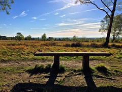 Bench With A View (Marc Sayce) Tags: ray eve bench blue sky skies april spring 2017 ludshott common headley down grayshott hampshire national trust
