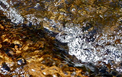 The stream tumbles along! (jeansmachines24) Tags: clyne stream tumbling spring2017 stones