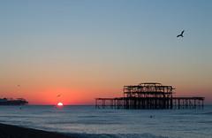 Brighton Piers Sunrise (suerob) Tags: sunrise sun dawn sunup daybreak morning sky sea waves winter november season brighton eastsussex england westpier palacepier brightonpier beach birds seagulls gulls blue orange red