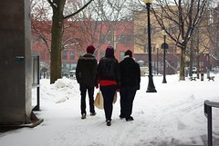 Three (Listeral Mac) Tags: person people three men man women woman walk snow burlington vt vermont winter tree park light lamp post street churchstreet jacket coat cold