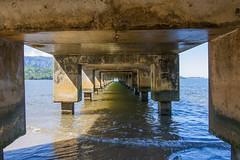 Under Hanalei Pier (john.lankau) Tags: kauai hanaleibay