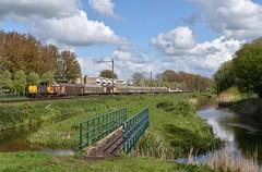 Alphen a/d Rijn, wagens voor Electrolux (Ahrend01) Tags: alphen electrolux 6455 dbc ns geelgrijs witgoed goederentrein