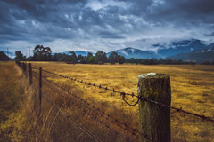 The high life (jenni 101) Tags: australia brightvictoria fence fencefriday hff victorianhighcountry