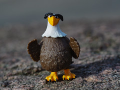 Our eagle - Bizim kartal #m43turkiye (Ciddi Biri) Tags: vivitar55mmf28 eagle toy kartal m43turkiye oyuncak bird animal wildanimal wildlife omdem10