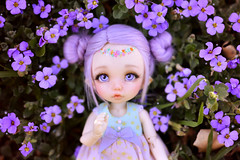 ☆ Purple Heart ☆ (Shimiro Kestrel) Tags: bjd doll fairyland pukifee ante pukifeeante cute kawaii fairy tiny tinybjd bjdphotography bjdportrait bjdcustom dollphotography dolls abjd balljointeddoll alpacawig pastel pastelgirl pastelfashion pastelhair