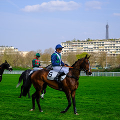 GAF photo-5.jpg (GAF photo) Tags: auteuil courseshippiques