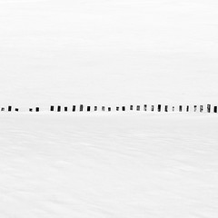 29 Fence Posts (Mabry Campbell) Tags: 2016 february h5d50c hasselblad mabrycampbell newmexico usa unitedstatesofamerica blackandwhite countryside fineart fineartphotography image landscape minimal minimalism photo photograph photographer photography simple snow white f12 february72016 20160207campbellb0000857 80mm ¹⁄₈₀₀sec 100 hc80