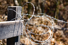 Round Up (Karen McQuilkin) Tags: wire barbedwire fencepost roundup western farm country rural