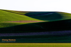 Light and Shadows (Objects1000) Tags: palouse landscape artistic vibrant easternwashington abstract rollinghills meadow hills light shadows scenery scenic patterns colors green texture nature colfax washington unitedstates us